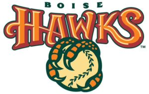 Boise Hawks no more? City leaders push for name change