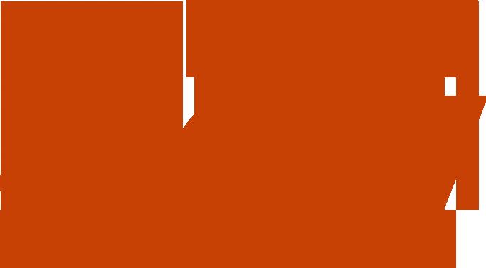 BoiseDev