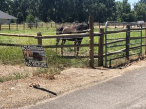 Updated NW Boise subdivision looks for approval again; neighbors still concerned