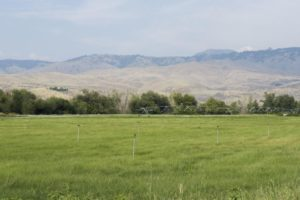 Boise Hunter Homes lays out plan for phase two of contentious Dry Creek Ranch subdivision