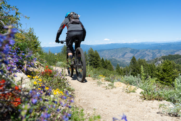 Summer at Bogus Basin