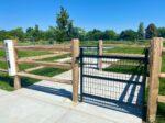Dog park in southwest boise