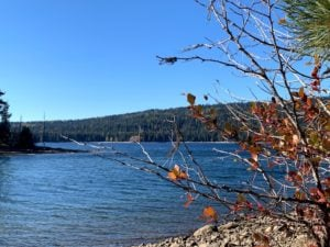 Deep Dive: State, Trident outline separate plans for future of McCall endowment lands