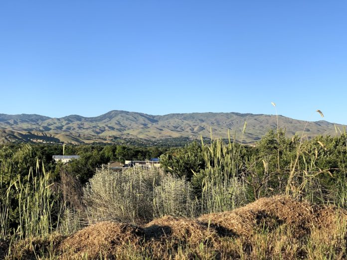 Hawkins Range Ridge Boise